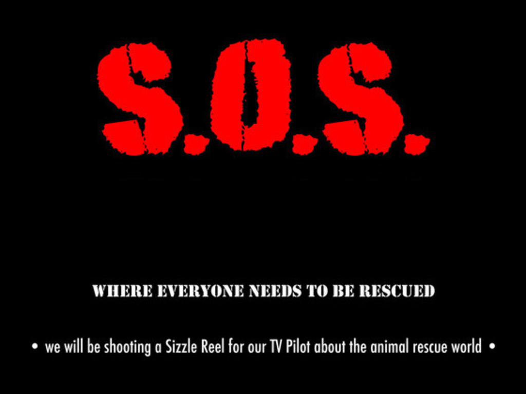 S.O.S.'s video poster