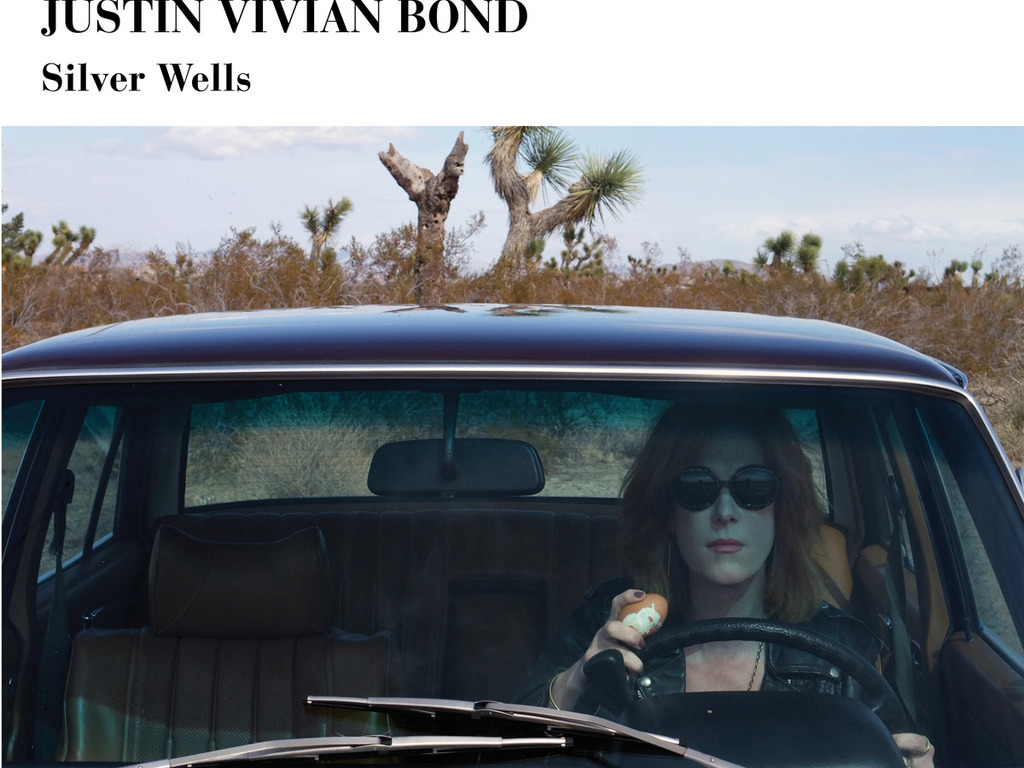 SILVER WELLS -a new CD from Mx Justin Vivian Bond's video poster