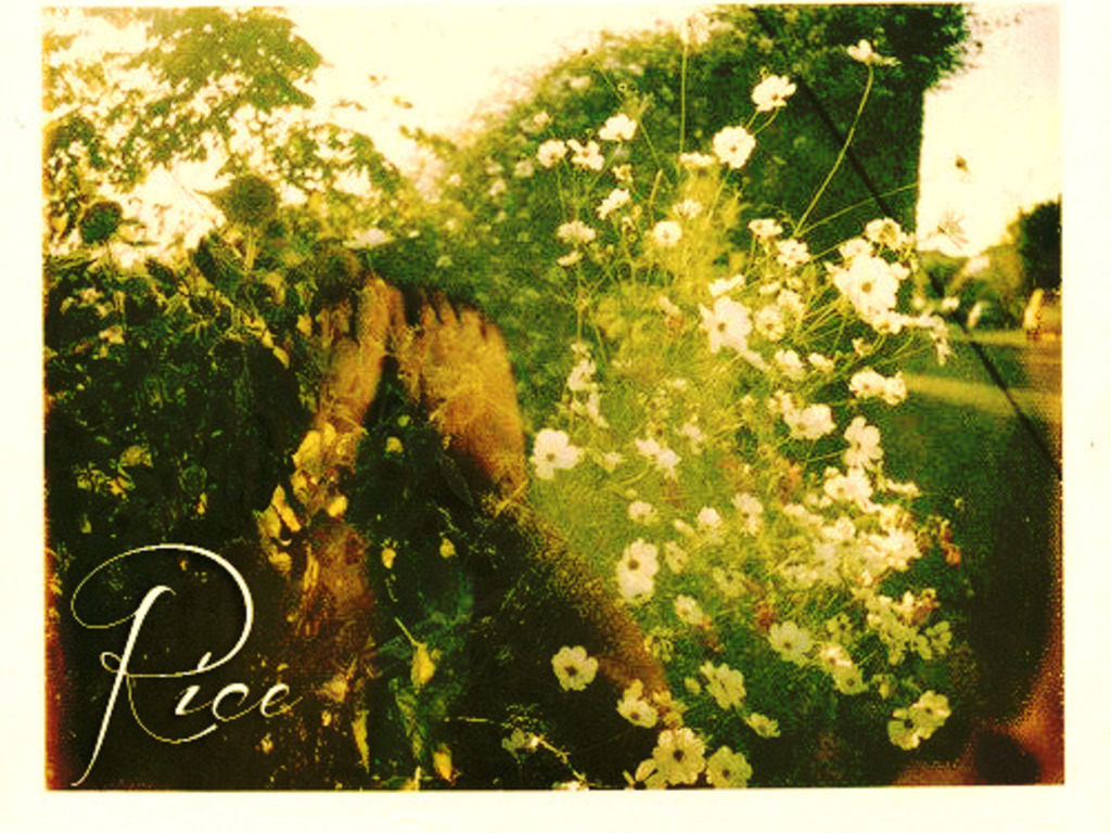 RICE Presses Their Debut Album 'Keep Warm' On Vinyl's video poster