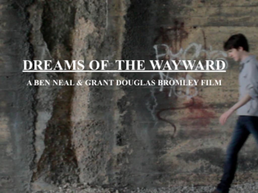 Dreams of The Wayward's video poster