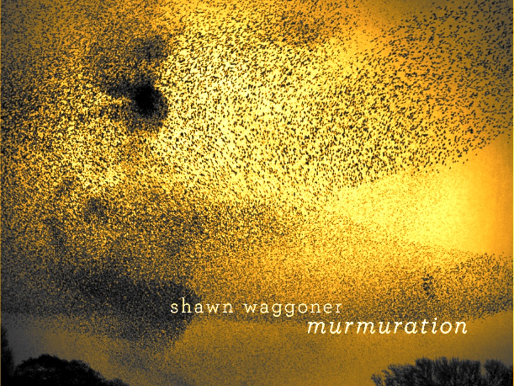 """Shawn Waggoner's """"Murmuration"""" CD's video poster"""
