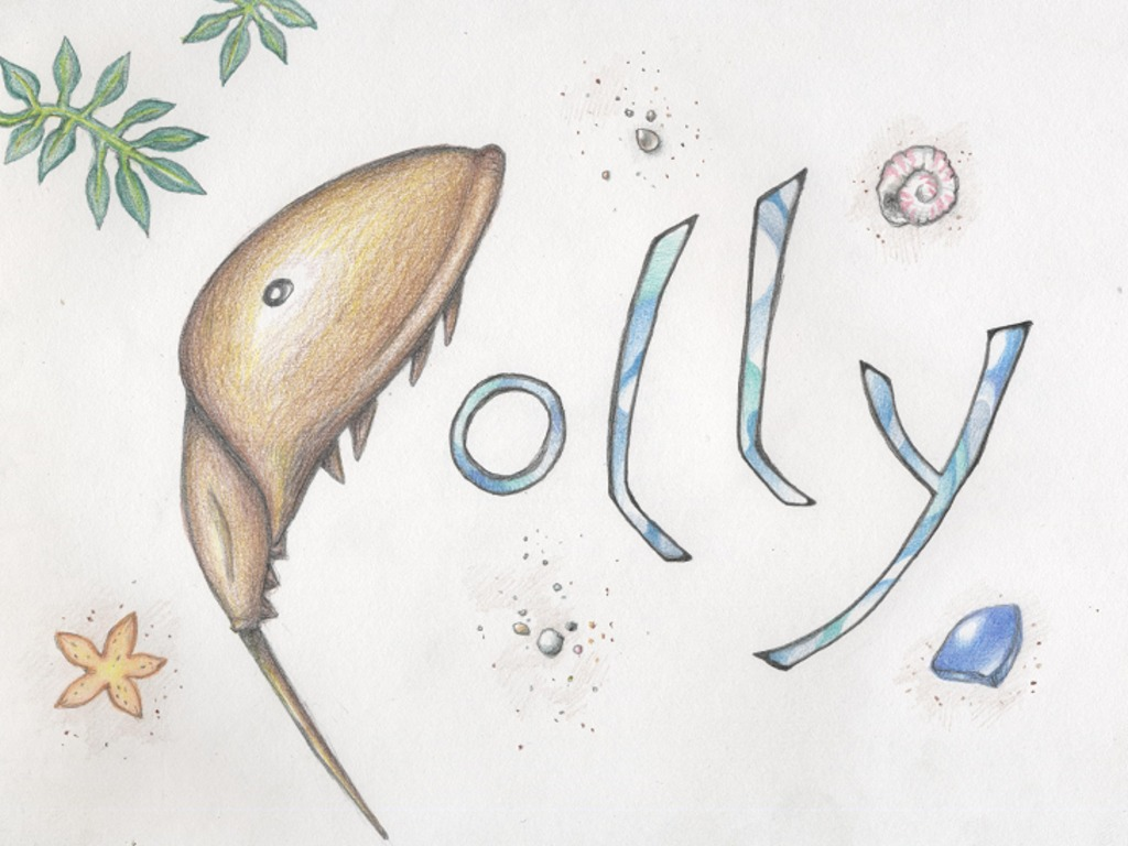 Polly's video poster