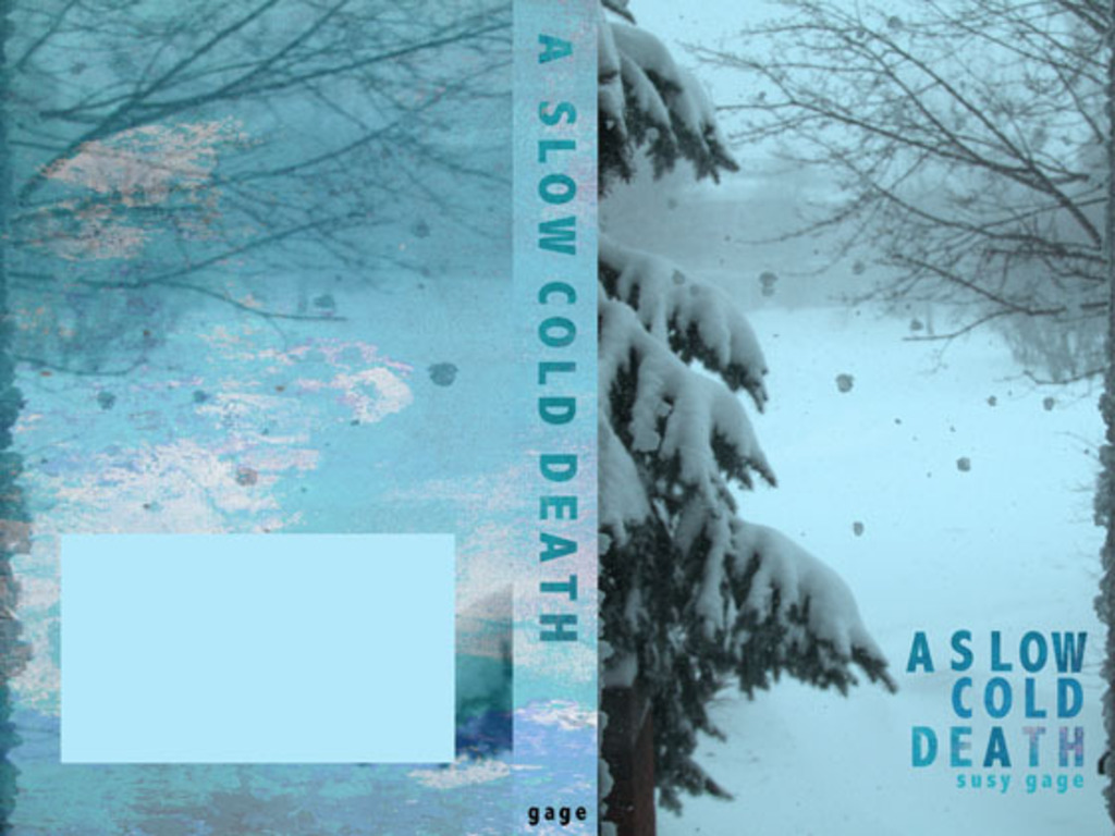 A Slow Cold Death's video poster