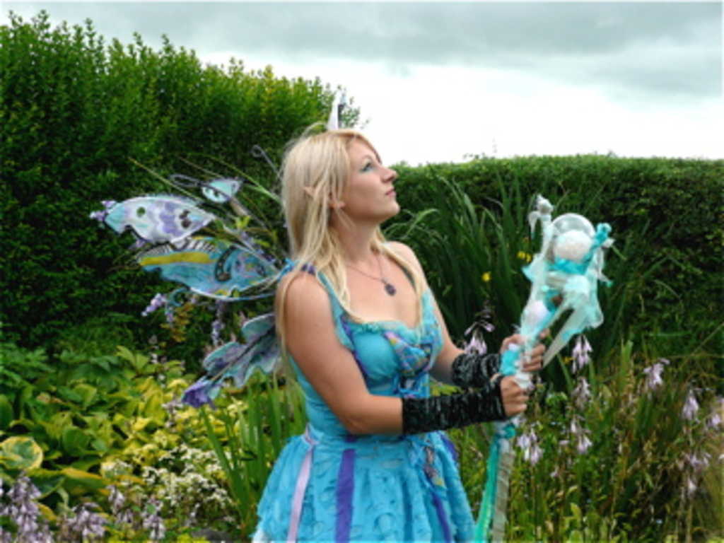 Faeries & The Elemental World - A Magical New Movie Project's video poster