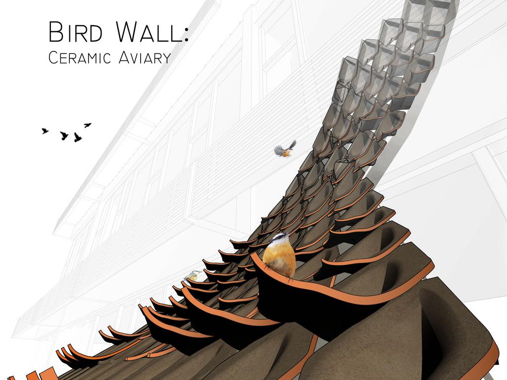 Bird Wall's video poster