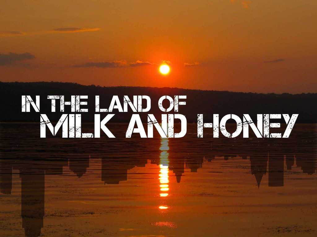 In the Land of Milk and Honey's video poster