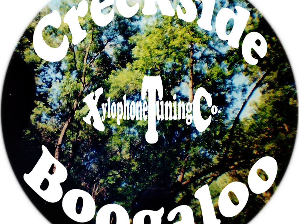Creekside Boogaloo's video poster