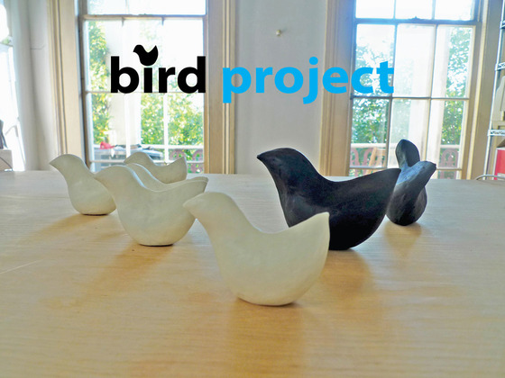 BirdProject: Biodiesel Glycerin Soaps for BP Oil Spill Cleanup's video poster