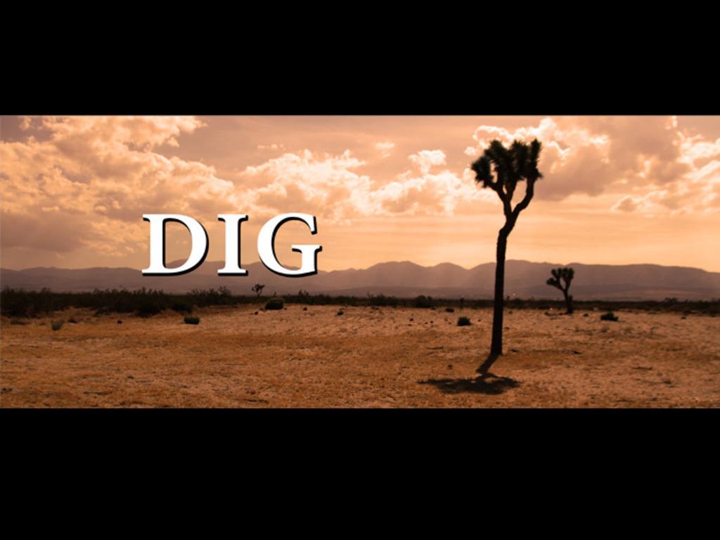 Dig Short Film's video poster