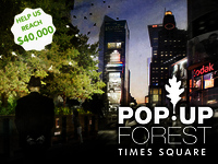 Build a PopUP Forest in Times Square, NYC