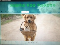 Please help me with my new website focused on safe dog sales