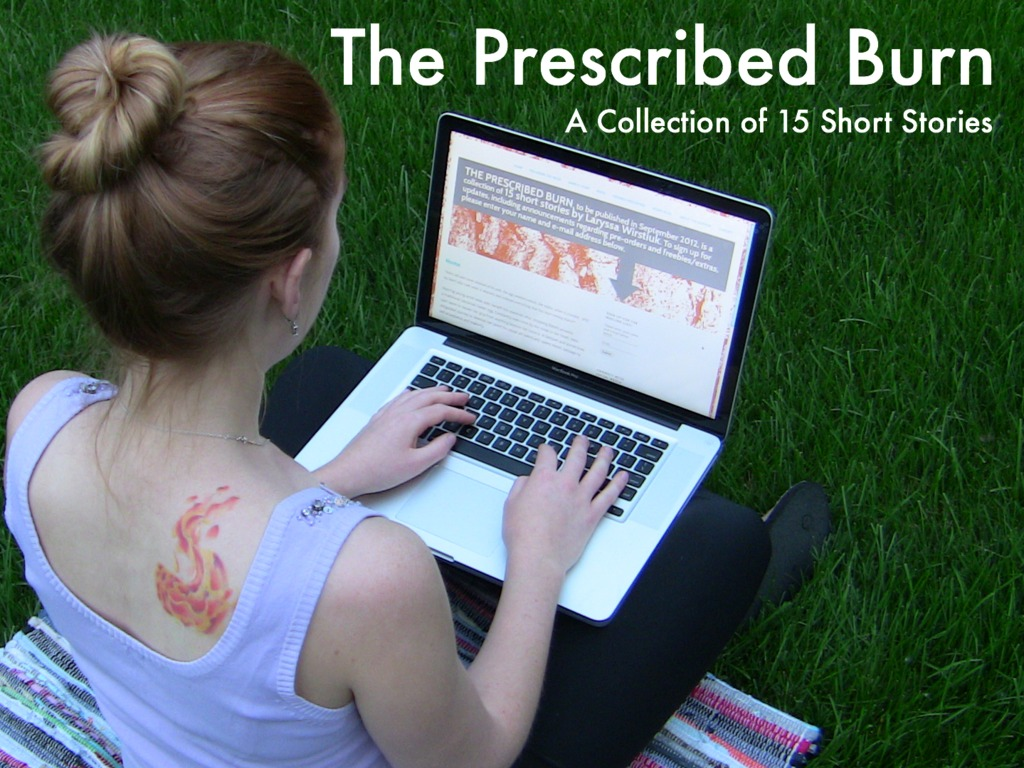 The Prescribed Burn: A Collection of 15 Short Stories's video poster