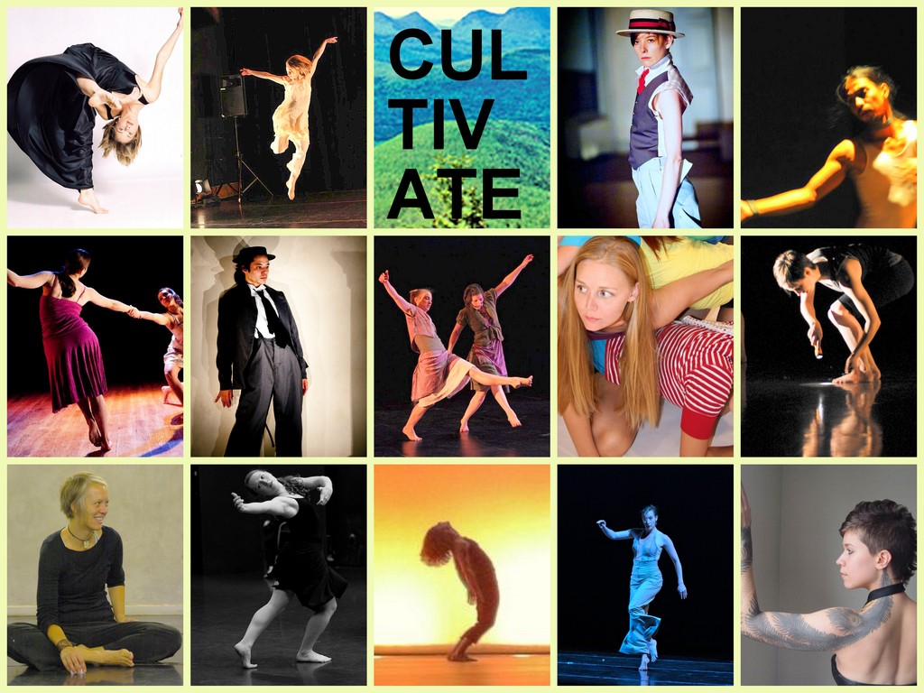 Cultivate 2012: Growing the Dance Scene in Northern NH's video poster