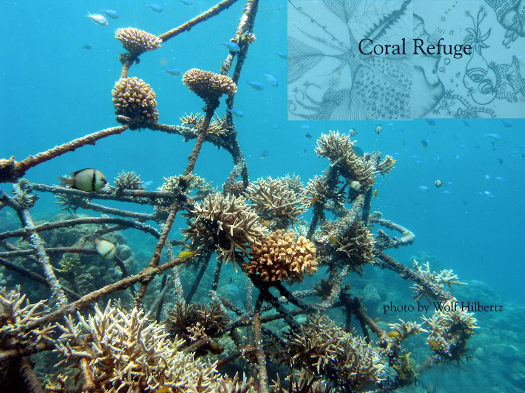Living Sea Sculpture: contemporary art as coral refuge's video poster
