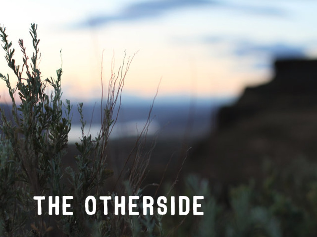 The Otherside's video poster