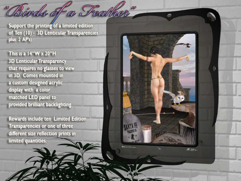"""""""Birds of a Feather"""" 3D Lenticular Transparencies & Prints's video poster"""