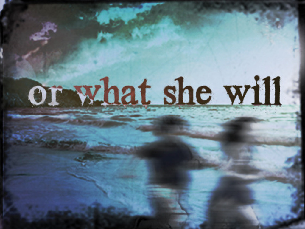 or what she will's video poster
