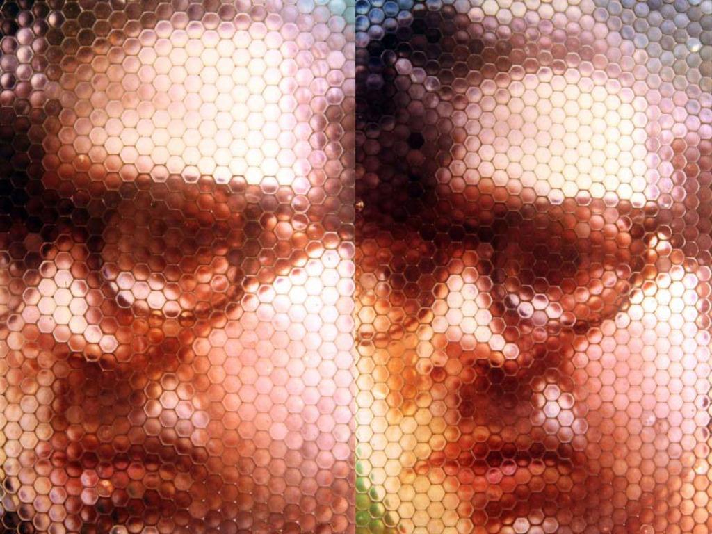SnakeMonkey Fly's Eye 3-D Portraits and Animation's video poster
