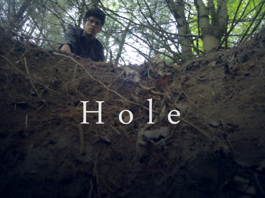 Hole's video poster