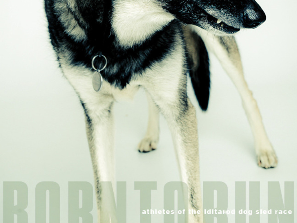 Help fund my book: BORN TO RUN / Athletes of the Iditarod's video poster