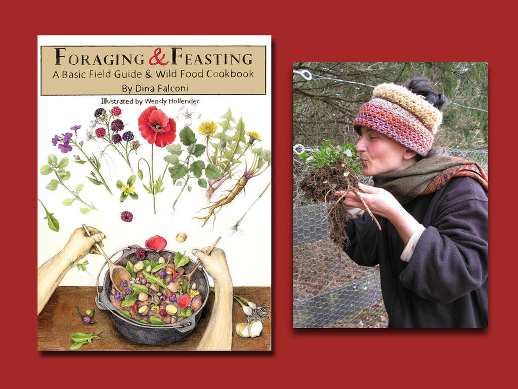 Foraging & Feasting: A Field Guide and Wild Food Cookbook's video poster