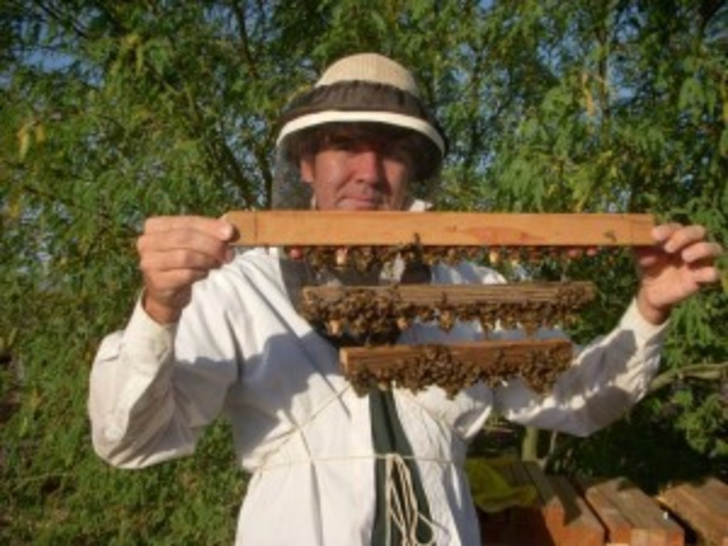 Restoring Beekeeping in the Southwest's video poster
