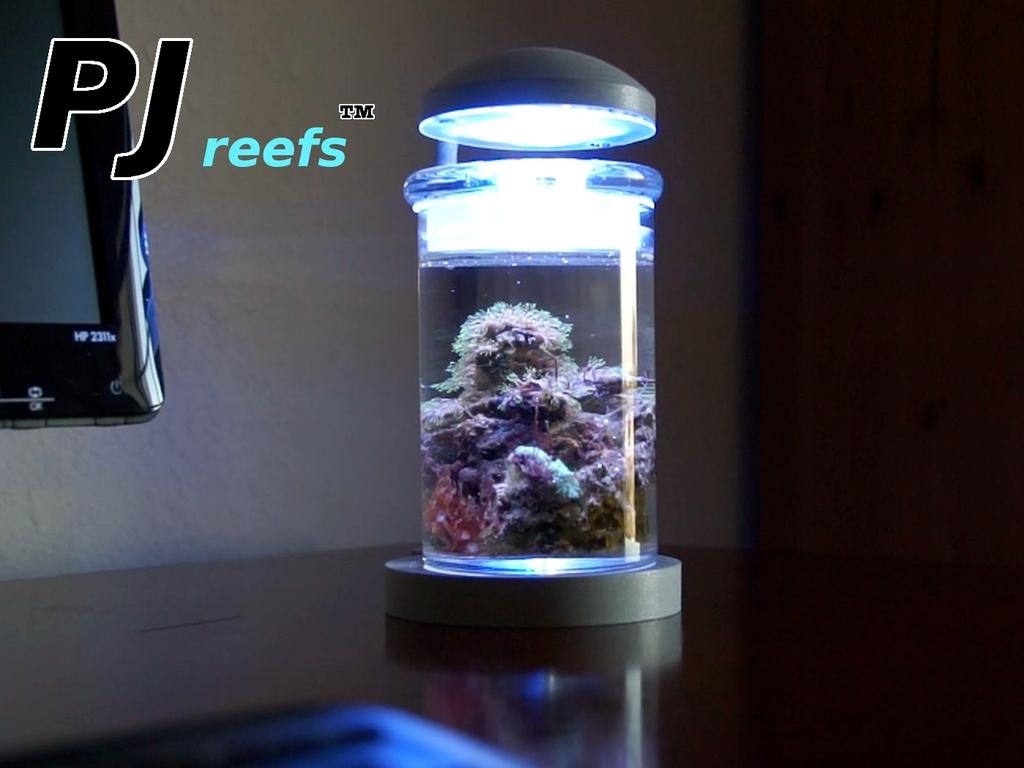 Miniature Saltwater Aquarium's video poster