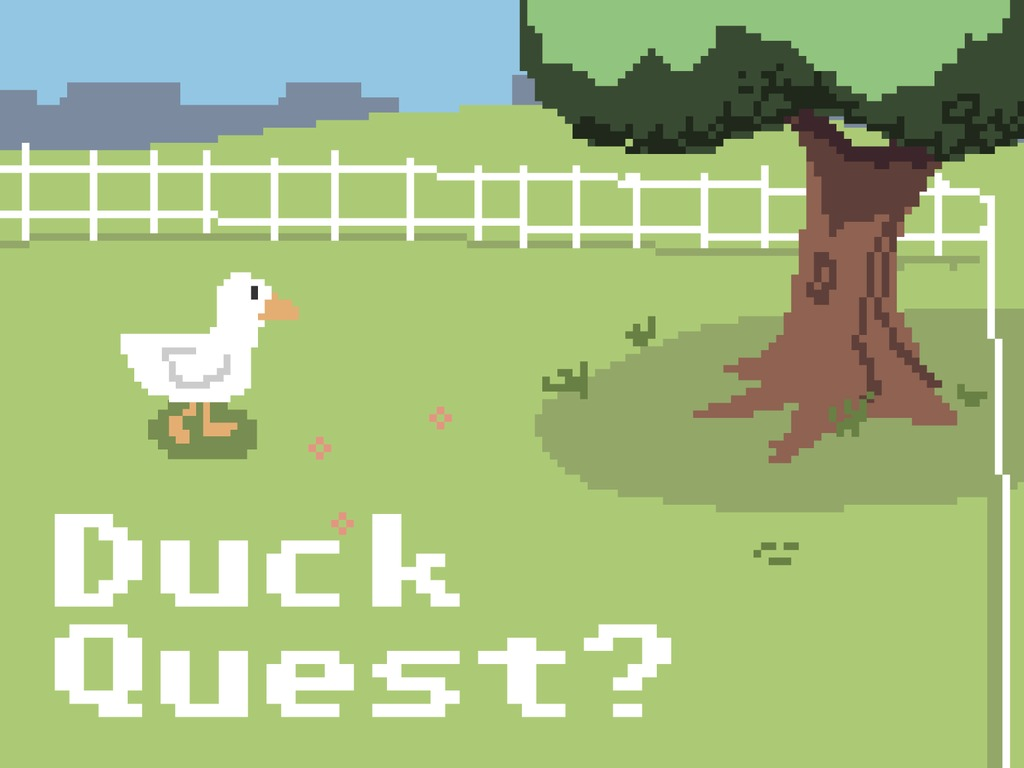 Duck Quest?'s video poster
