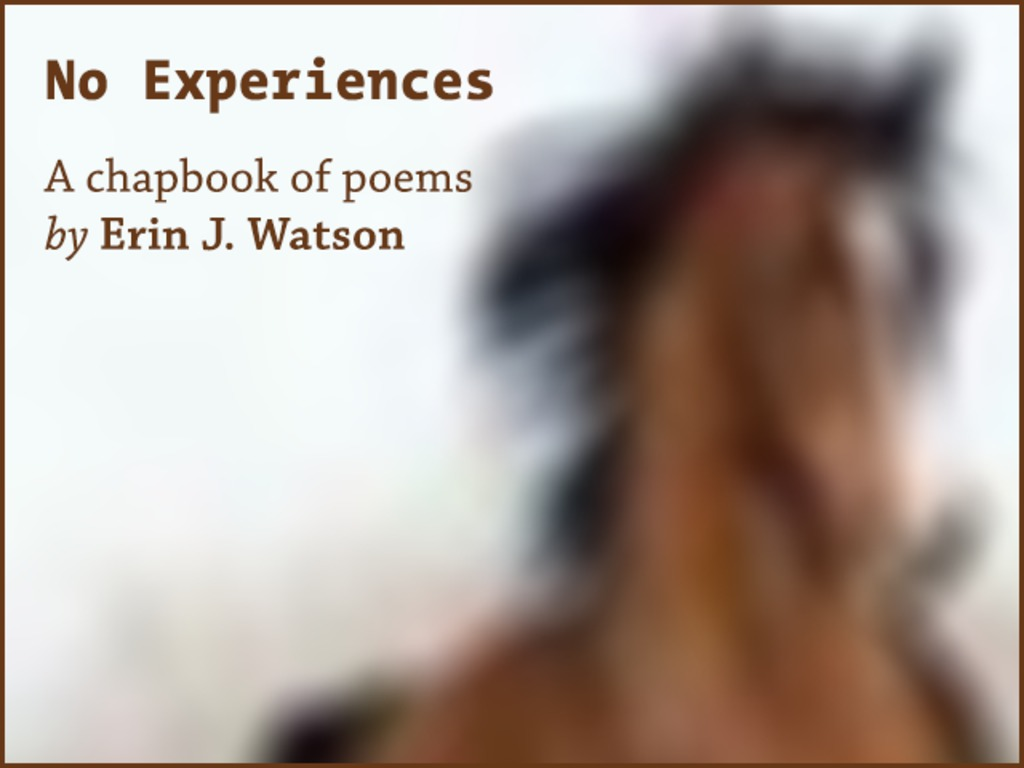 No Experiences (or, 24 Ways of Looking at a Spam Horse)'s video poster