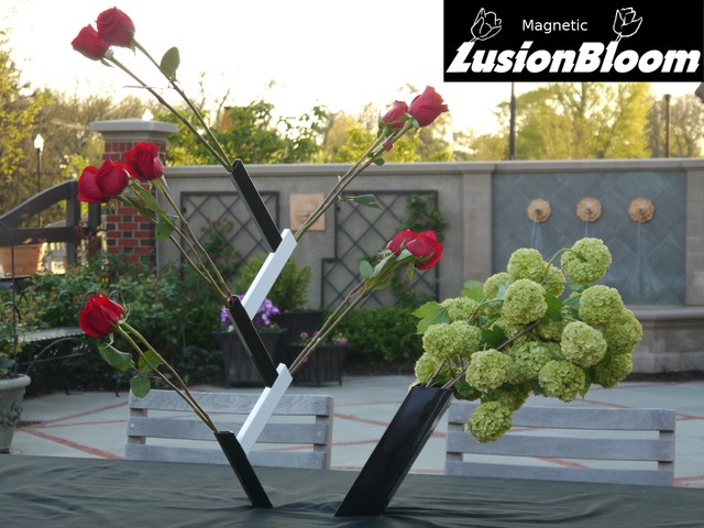 """LusionBloom - The illusionary """"gravity defying"""" leaning vase's video poster"""