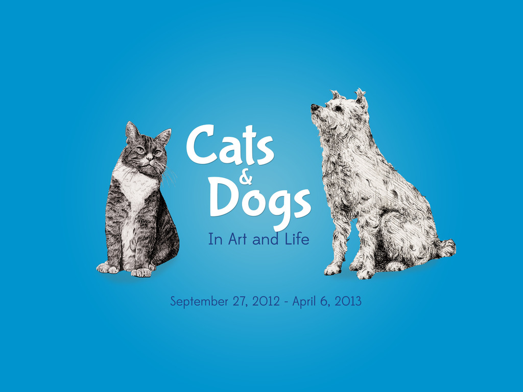 Calling all Cats & Dogs's video poster