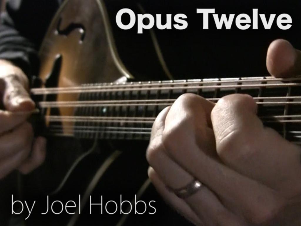 Opus Twelve's video poster