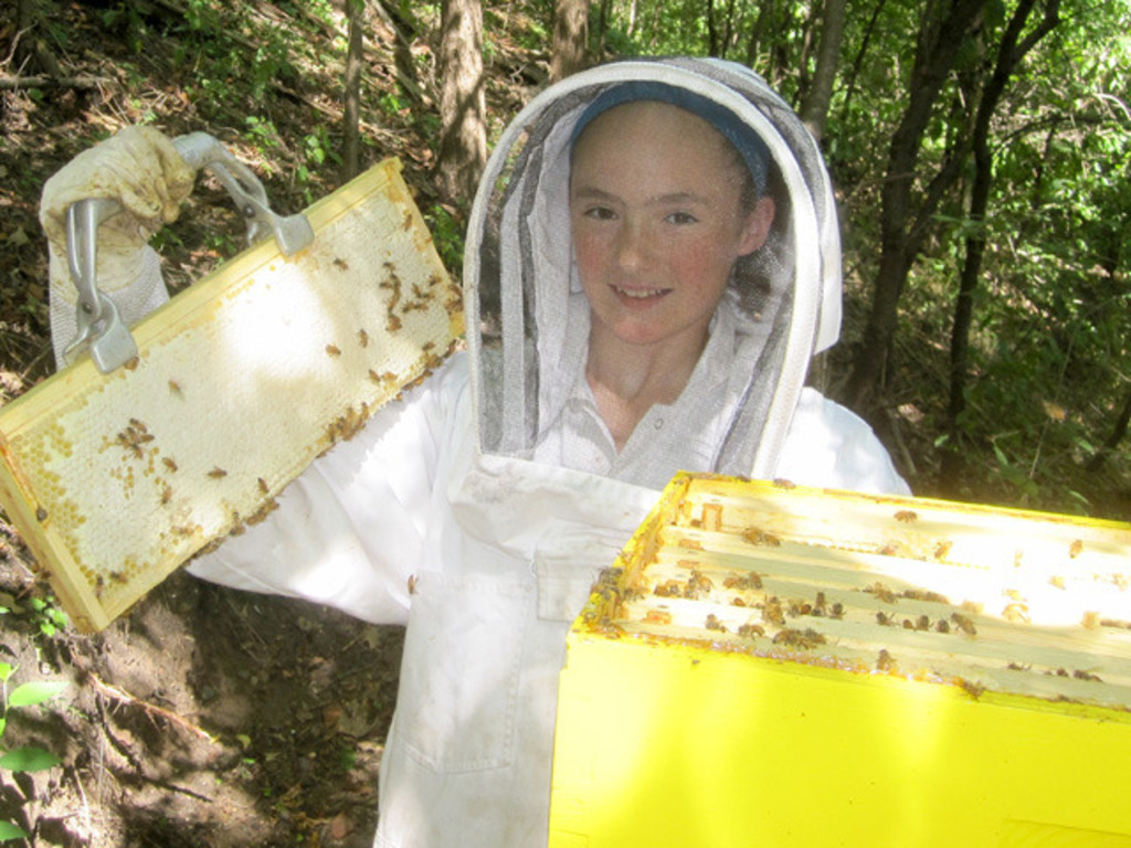 The Story of a Blossoming Honey Business's video poster