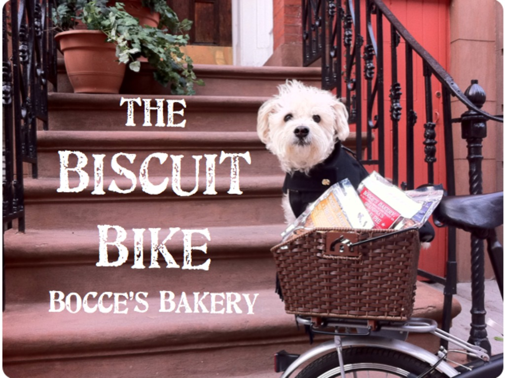 Bocce's Biscuit Bike: A Mobile Treat Cart for NYC Pups!'s video poster
