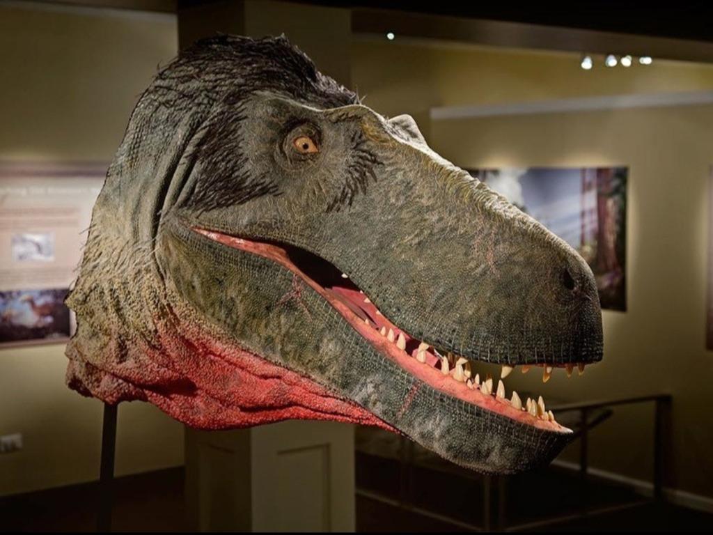 Digital Dinosaur: Dryptosaurus's video poster