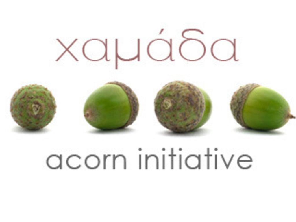 i love acorns!'s video poster