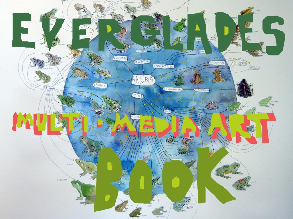 Everglades Multi Media Art Book's video poster