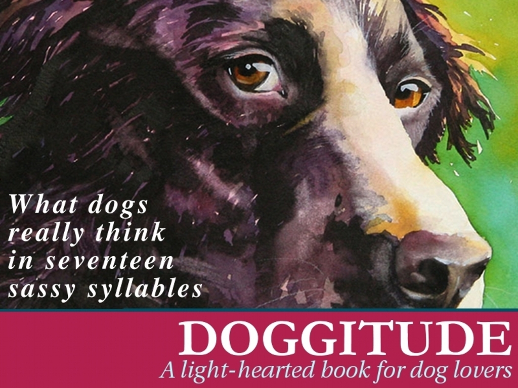 Doggitude: A Light-Hearted Book for Dog Lovers's video poster