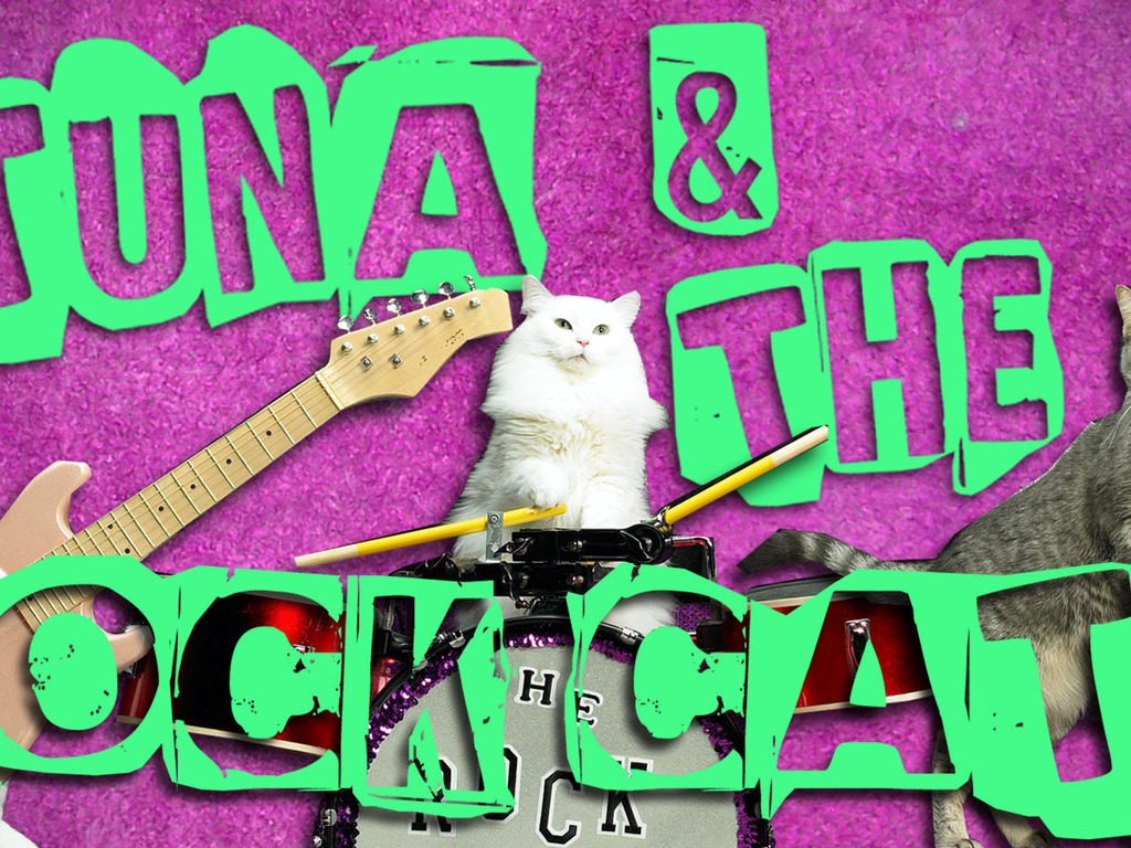 Amazing Acro-Cats and Rock-Cats Purr-fect Tour Bus's video poster