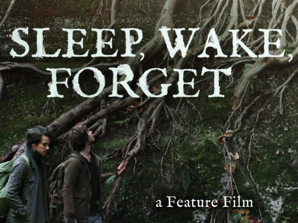 Sleep, Wake, Forget's video poster