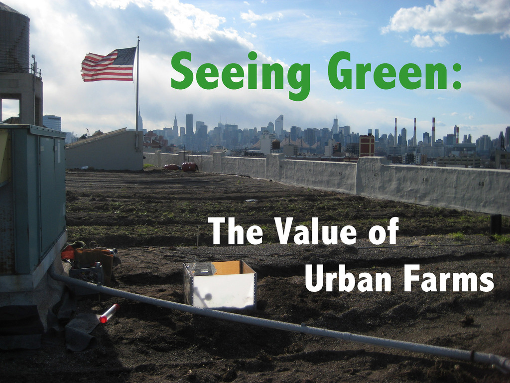 Seeing Green: The Value of Urban Farms's video poster