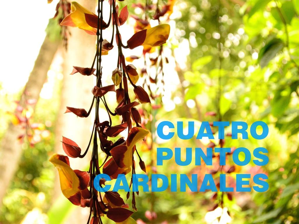 El Salvador: The Four Cardinal Points's video poster