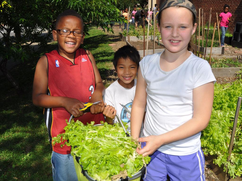Build DC Public School Kids a FoodPrints Teaching Kitchen!'s video poster