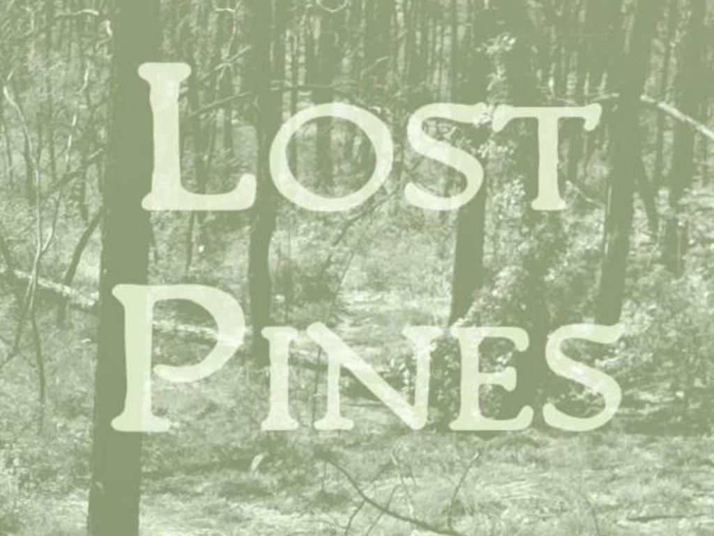 Lost Pines's video poster