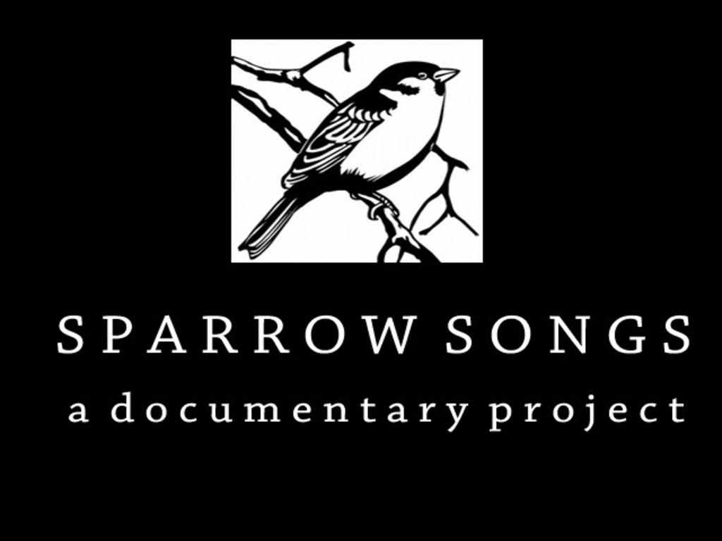 Sparrow Songs - a documentary project's video poster