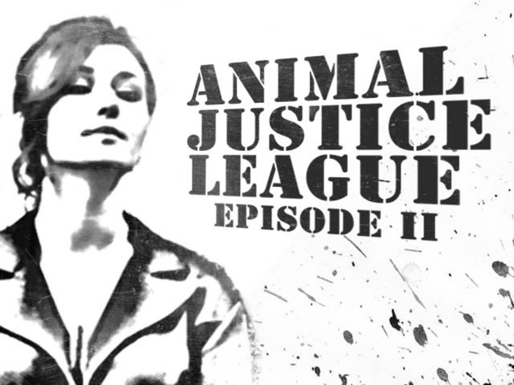 Animal Justice League, Episode II's video poster
