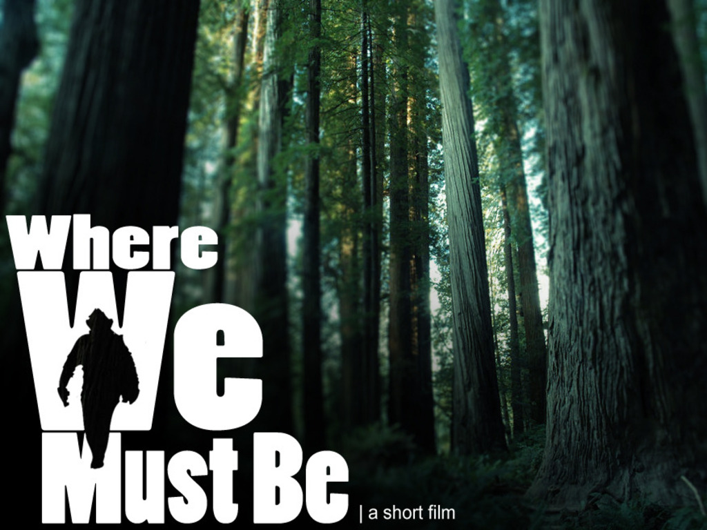 Where We Must Be's video poster