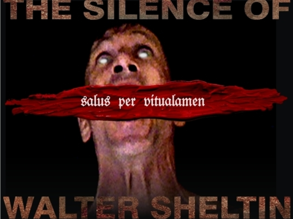 The Silence of Walter Sheltin's video poster