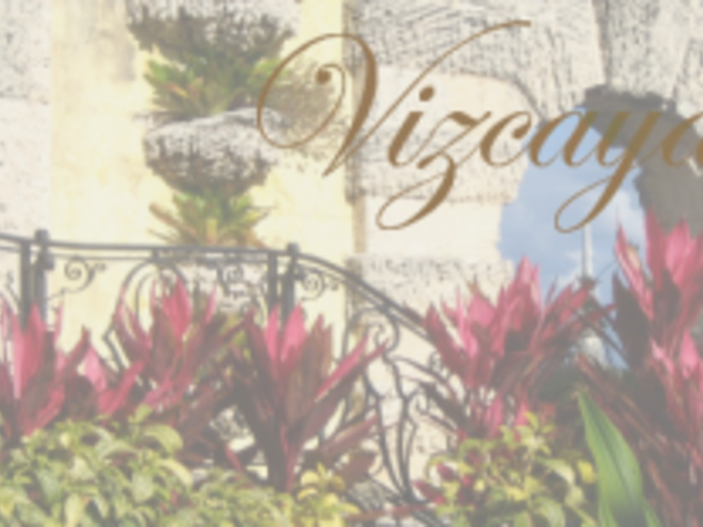 Vizcaya: A young adult novel's video poster