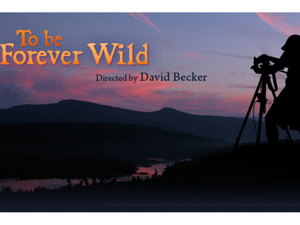 To Be Forever Wild - A Documentary Film in Progress's video poster